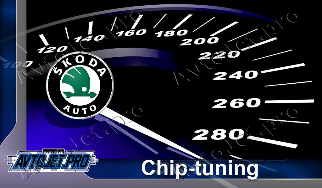 Chip-Tuning Skoda
