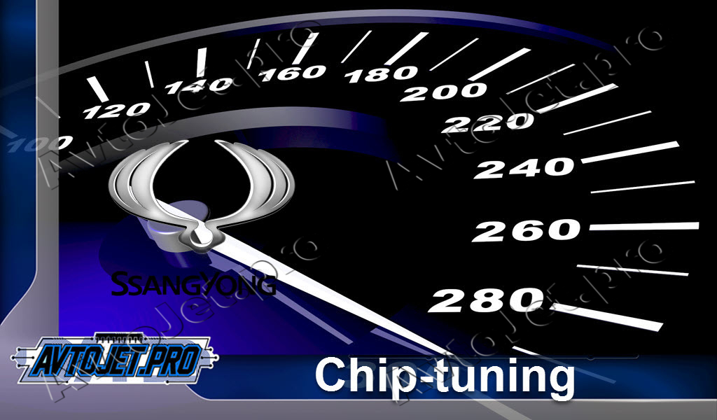 Chip-Tuning SsangYong