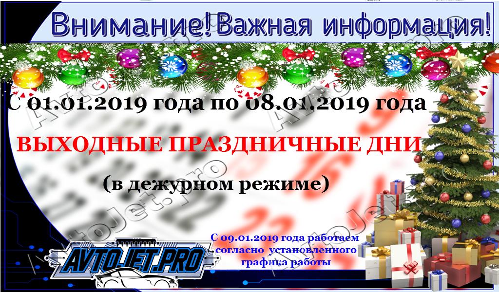 Vykhodnye v ianvare 2019
